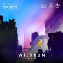 Wild Things (Alex Leavon Remix)
